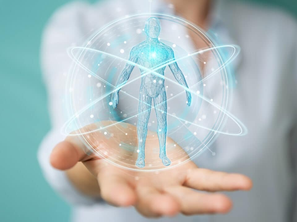 corpo umano - kinesiologia